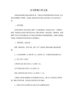 公司管理工作方案.doc