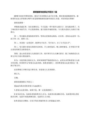 新郎接新年的保证书范文3篇.docx