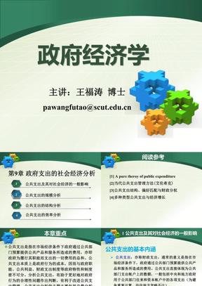 政府经济学-9.ppt