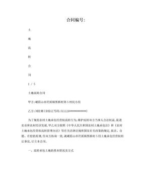 土地流转合同(村民小组打印版本).doc
