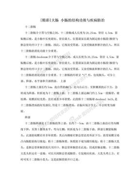 [精彩]大肠 小肠的结构功效与疾病防治.doc