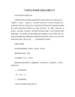 公司突发环境事件应急演练方案.doc