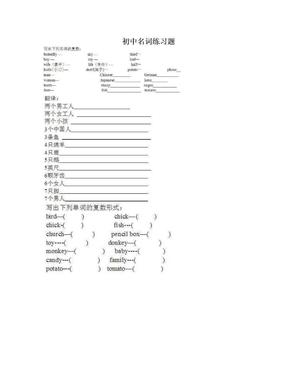 初中名词练习题.doc
