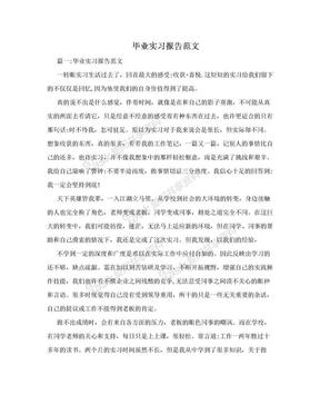毕业实习报告范文.doc