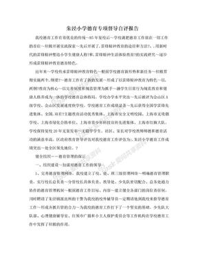 朱泾小学德育专项督导自评报告.doc