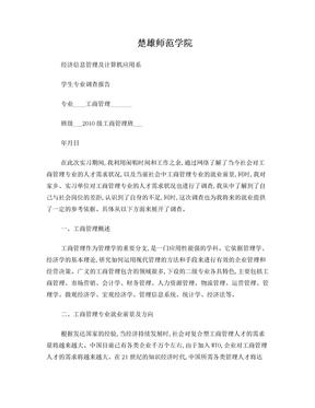 工商管理专业调查报告.doc