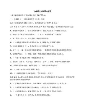 小学语文修辞手法练习.docx