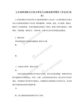 九小场所消防安全重点单位火灾隐患排查整治工作总结(范本).doc