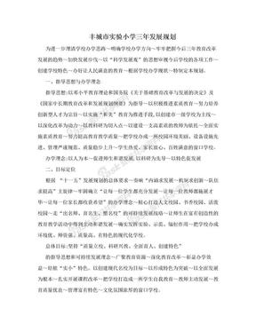 丰城市实验小学三年发展规划.doc
