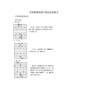 中国象棋各棋子的走法及练习.doc