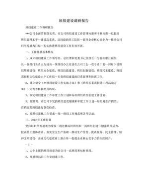 班组建设调研报告.doc