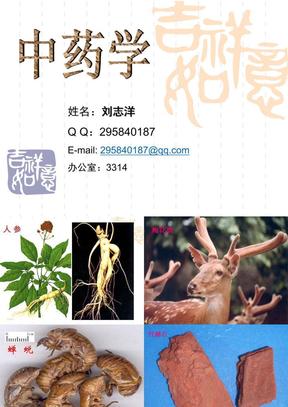 中药学--刘志洋(吉林医药学院).ppt