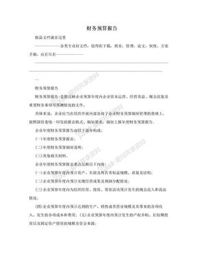 财务预算报告.doc