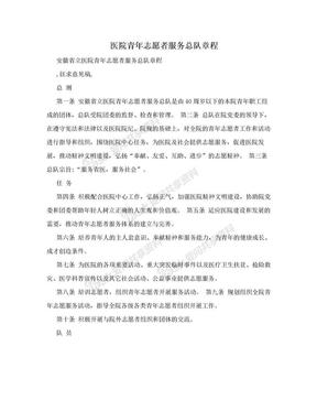 医院青年志愿者服务总队章程.doc