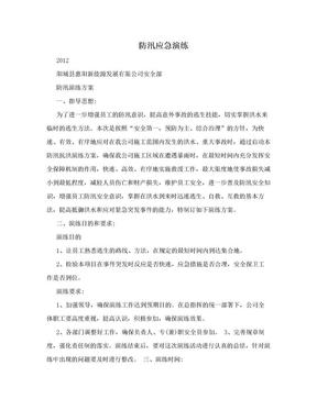 防汛应急演练.doc
