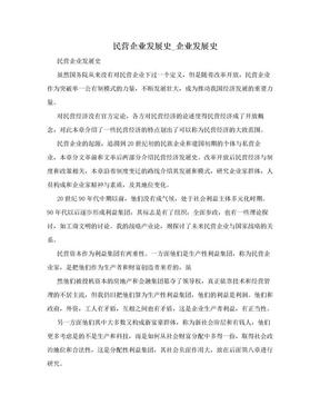 民营企业发展史_企业发展史.doc