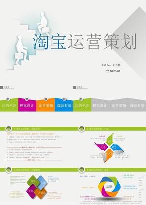 个性定制类目淘宝企业店铺运营发展规划