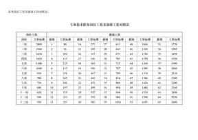 各类岗位工资及薪级工资对照表_文档20.doc
