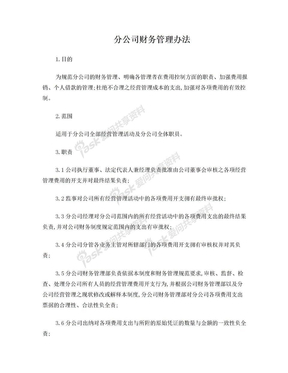 总公司下设分公司财务管理办法.doc