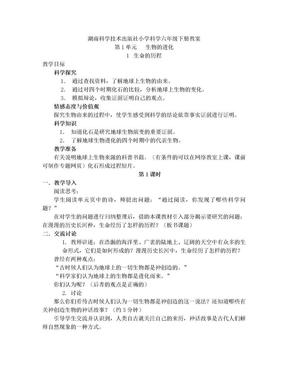 (湖南科学技术出版社)小学六年级科学下册全册教案.doc