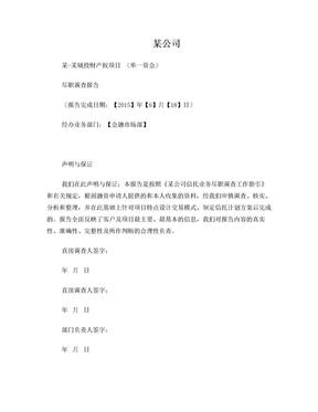 金融投资项目尽职调查报告范本.doc