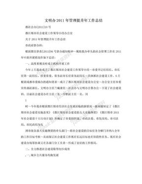 文明办2011年管理提升年工作总结.doc