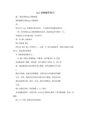 wps表格操作练习.doc