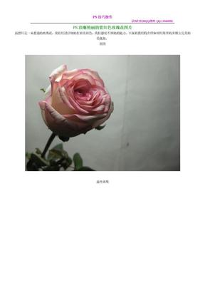 PS清晰艳丽的紫红色玫瑰花图片.doc