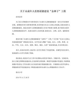 金种子工程总结.doc