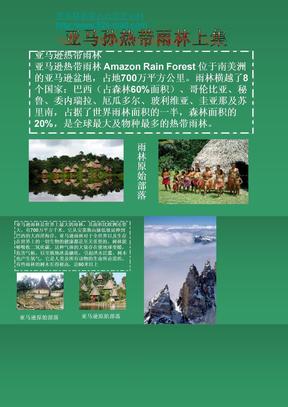 亚马逊热带雨林上集.ppt