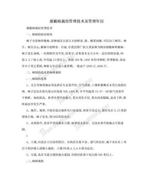 甜脆柿栽培管理技术及管理年历.doc