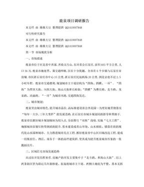 鹿泉项目调研报告.doc