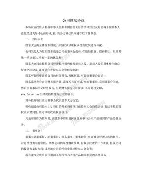 公司股东协议.doc