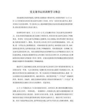 参加基层党支部书记培训班心得体会.doc