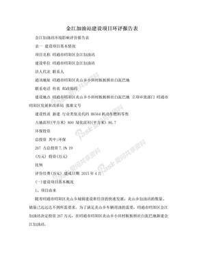 金江加油站建设项目环评报告表.doc