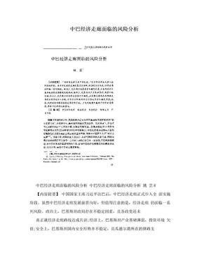 中巴经济走廊面临的风险分析.doc