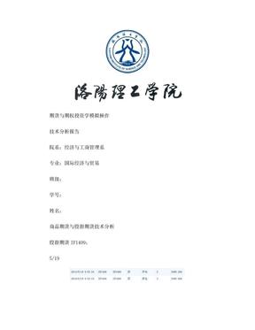 期货的技术分析报告.doc