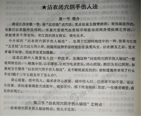沾衣闭穴阴手伤人法.pdf.pdf