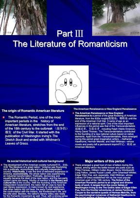 美国文学之浪漫主义文学.ppt