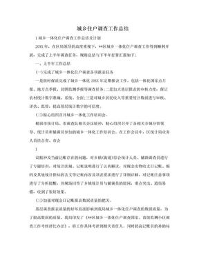 城乡住户调查工作总结.doc