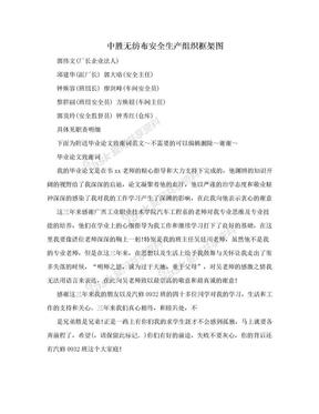 中胜无纺布安全生产组织框架图.doc