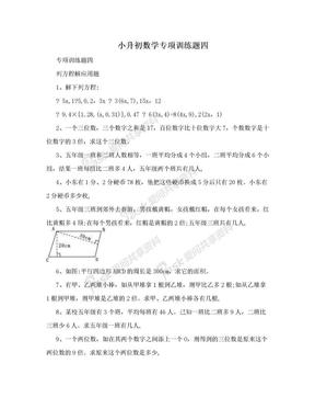小升初数学专项训练题四.doc