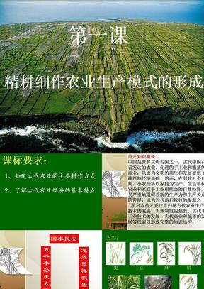 第1课_精耕细作农业生产模式的形成.ppt