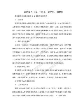 总结报告-1队 王勇强、姜严明、刘烨明.doc