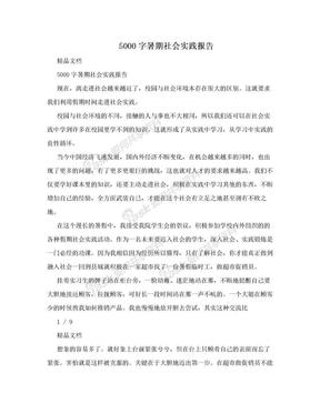 5000字暑期社会实践报告.doc