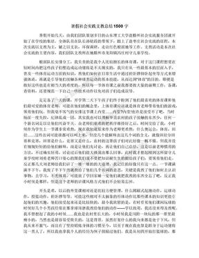 暑假社会实践支教总结1500字.docx