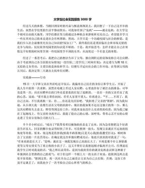 大学生社会实践报告3000字.docx