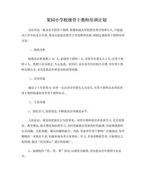 小学骨干教师培养方案.doc