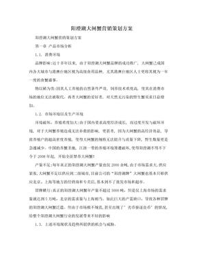 阳澄湖大闸蟹营销策划方案.doc