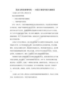 荒凉戈壁的璀璨明珠——内蒙古葡萄玛瑙专题报道.doc